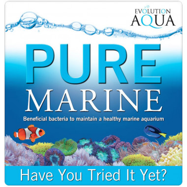 Evolution Aqua Pure Marine 50 balls