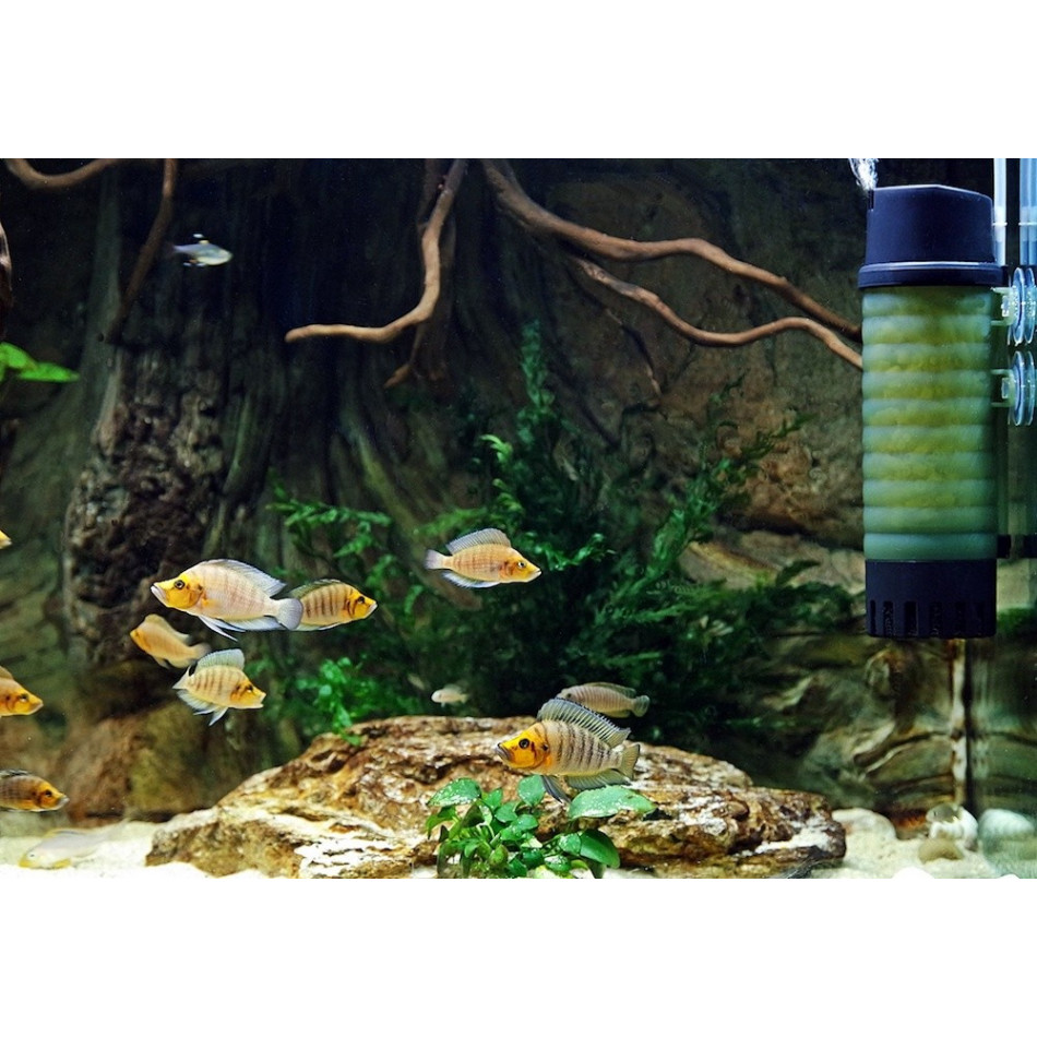zb 300 aquarium moving bed fluidised biological filter marine and