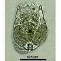 Live S/SS type Rotifer starter culture 500ml (Brachionus rotundiformis) Rotifers