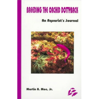 Breeding The Orchid Dottyback, Pseudochromis Fridmani: An Aquarist's Journal