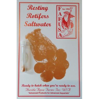 Saltwater Resting Rotifer Cysts (Brachionus plicatilis) Marine rotifers